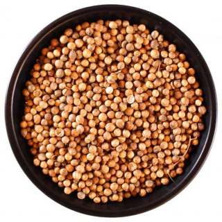 Coriander Seed by the pound